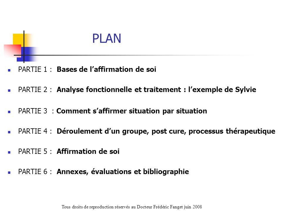 PLAN PARTIE 1 : Bases de laffirmation de soi PARTIE 2 : Analyse fonctionnelle et traitement : lexemple de Sylvie PARTIE 3 : Comment saffirmer situatio