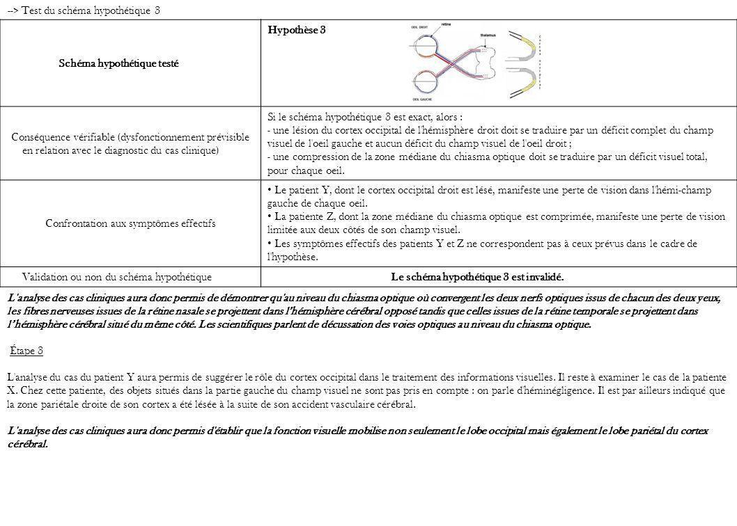 Schéma hypothétique testé Hypothèse 3 Conséquence vérifiable (dysfonctionnement prévisible en relation avec le diagnostic du cas clinique) Si le schém