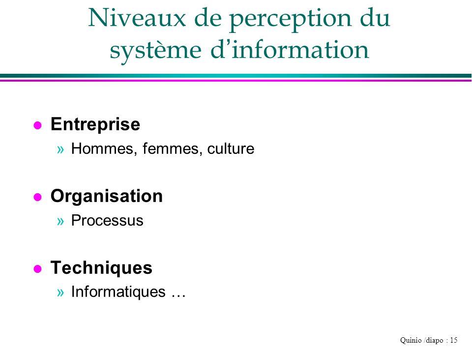 Quinio /diapo : 15 Niveaux de perception du système d information l Entreprise »Hommes, femmes, culture l Organisation »Processus l Techniques »Inform