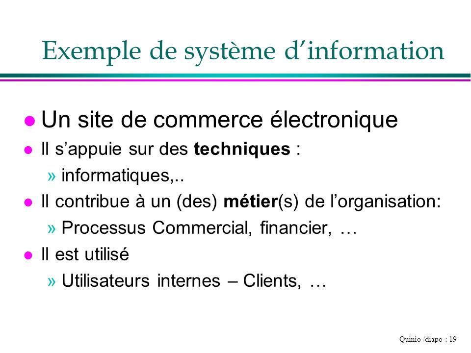 Quinio /diapo : 19 Exemple de système dinformation l Un site de commerce électronique l Il sappuie sur des techniques : »informatiques,.. l Il contrib
