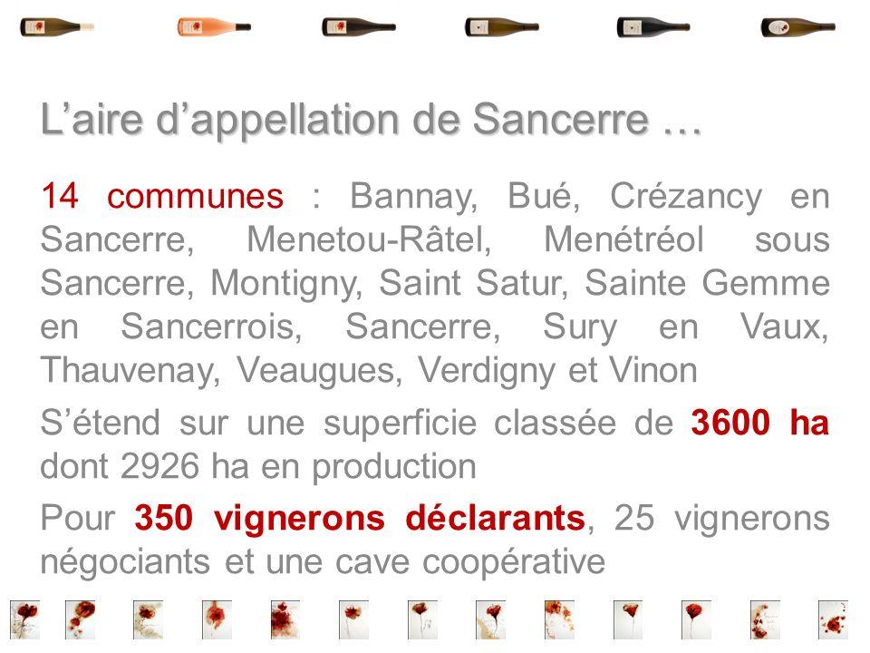 Laire dappellation de Sancerre … 14 communes : Bannay, Bué, Crézancy en Sancerre, Menetou-Râtel, Menétréol sous Sancerre, Montigny, Saint Satur, Saint