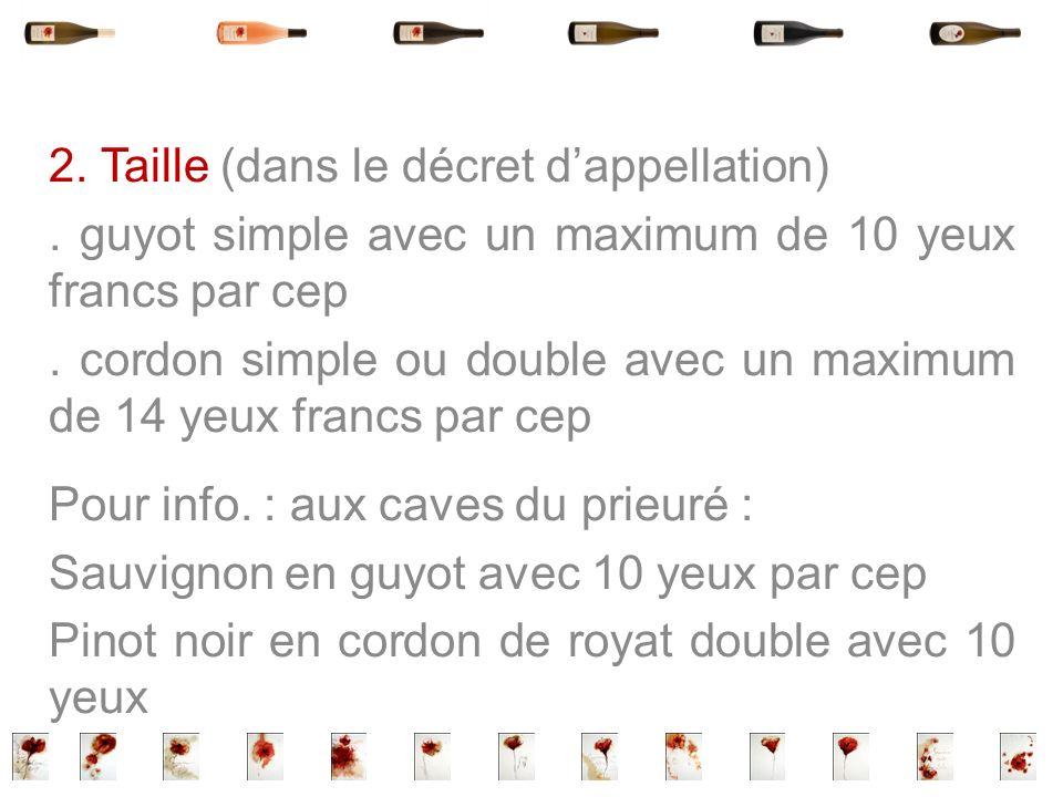 2. Taille (dans le décret dappellation). guyot simple avec un maximum de 10 yeux francs par cep. cordon simple ou double avec un maximum de 14 yeux fr