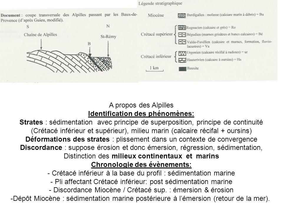 A propos des Alpilles Identification des phénomènes: Strates : sédimentation avec principe de superposition, principe de continuité (Crétacé inférieur et supérieur), milieu marin (calcaire récifal + oursins) Déformations des strates : plissement dans un contexte de convergence Discordance : suppose érosion et donc émersion, régression, sédimentation, Distinction des milieux continentaux et marins Chronologie des évènements: - Crétacé inférieur à la base du profil : sédimentation marine - Pli affectant Crétacé inférieur: post sédimentation marine - Discordance Miocène / Crétacé sup.
