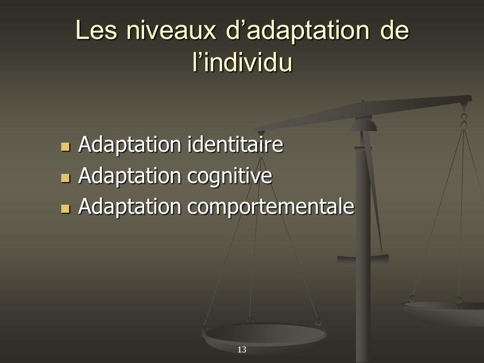 13 Les niveaux dadaptation de lindividu Adaptation identitaire Adaptation identitaire Adaptation cognitive Adaptation cognitive Adaptation comportemen