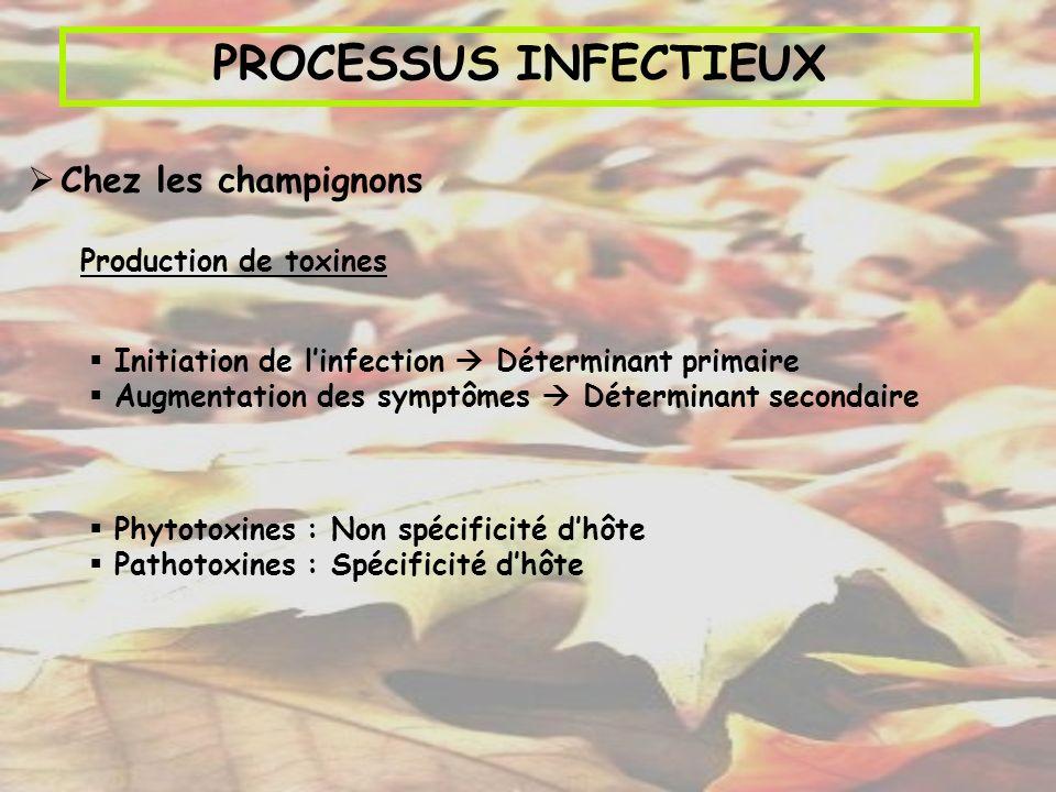 PROCESSUS INFECTIEUX Chez les champignons Production de toxines Phytotoxines : Non spécificité dhôte Pathotoxines : Spécificité dhôte Initiation de li