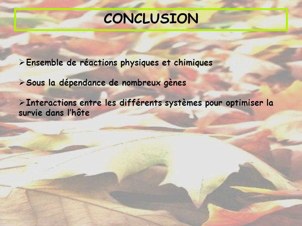 CONCLUSION Ensemble de réactions physiques et chimiques Sous la dépendance de nombreux gènes Interactions entre les différents systèmes pour optimiser