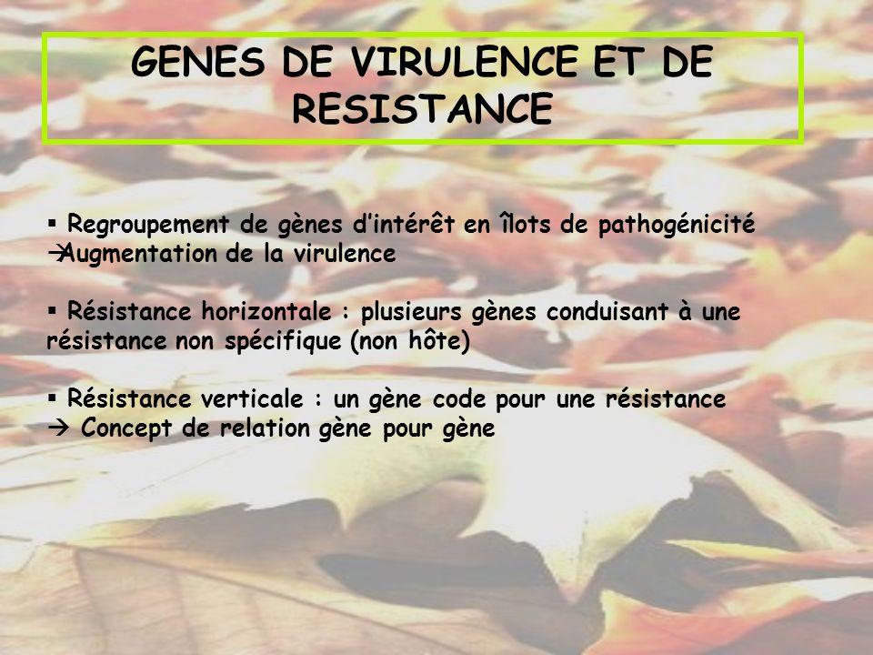 GENES DE VIRULENCE : Concept de relation gène à gène Pathogène Hôte Gène de virulence Gène davirulence Gène de résistance Incompatibilité Pas de gène de résistanceCompatibilité Incompatibilité