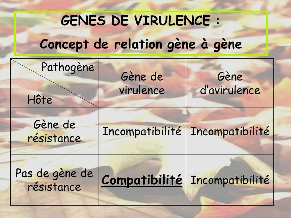 GENES DE VIRULENCE : Concept de relation gène à gène Pathogène Hôte Gène de virulence Gène davirulence Gène de résistance Incompatibilité Pas de gène