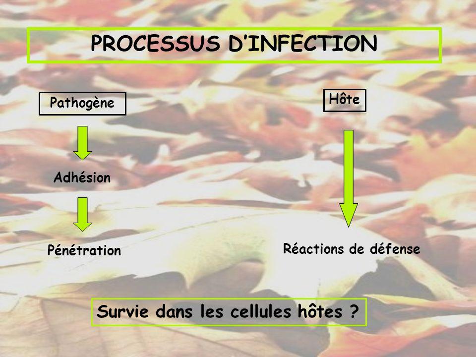 PROCESSUS DINFECTION Pathogène Hôte Adhésion Pénétration Réactions de défense Survie dans les cellules hôtes ?