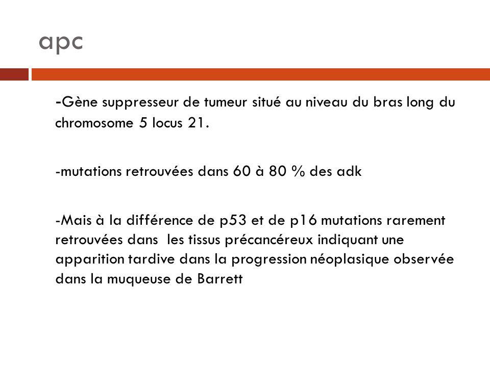 apc - Gène suppresseur de tumeur situé au niveau du bras long du chromosome 5 locus 21. -mutations retrouvées dans 60 à 80 % des adk -Mais à la différ