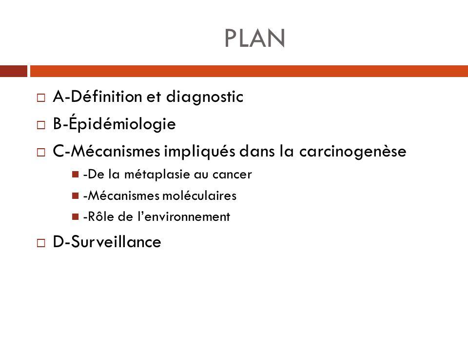 PLAN A-Définition et diagnostic B-Épidémiologie C-Mécanismes impliqués dans la carcinogenèse -De la métaplasie au cancer -Mécanismes moléculaires -Rôl
