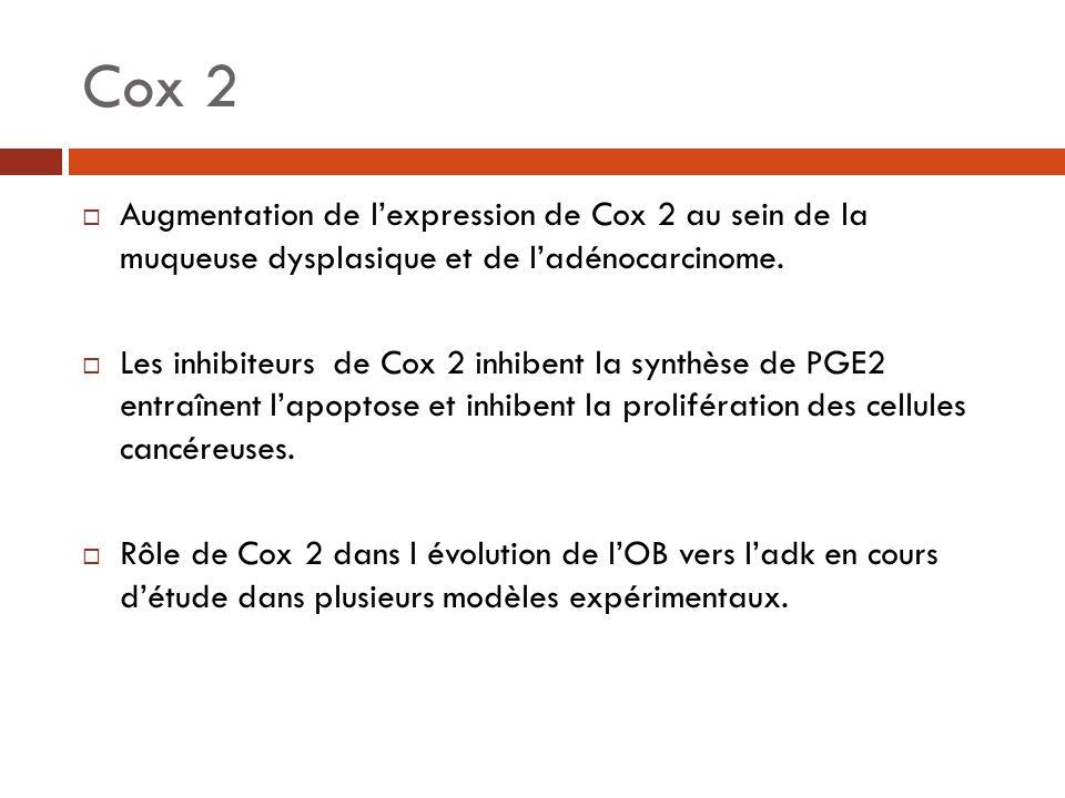 Cox 2 Augmentation de lexpression de Cox 2 au sein de la muqueuse dysplasique et de ladénocarcinome. Les inhibiteurs de Cox 2 inhibent la synthèse de