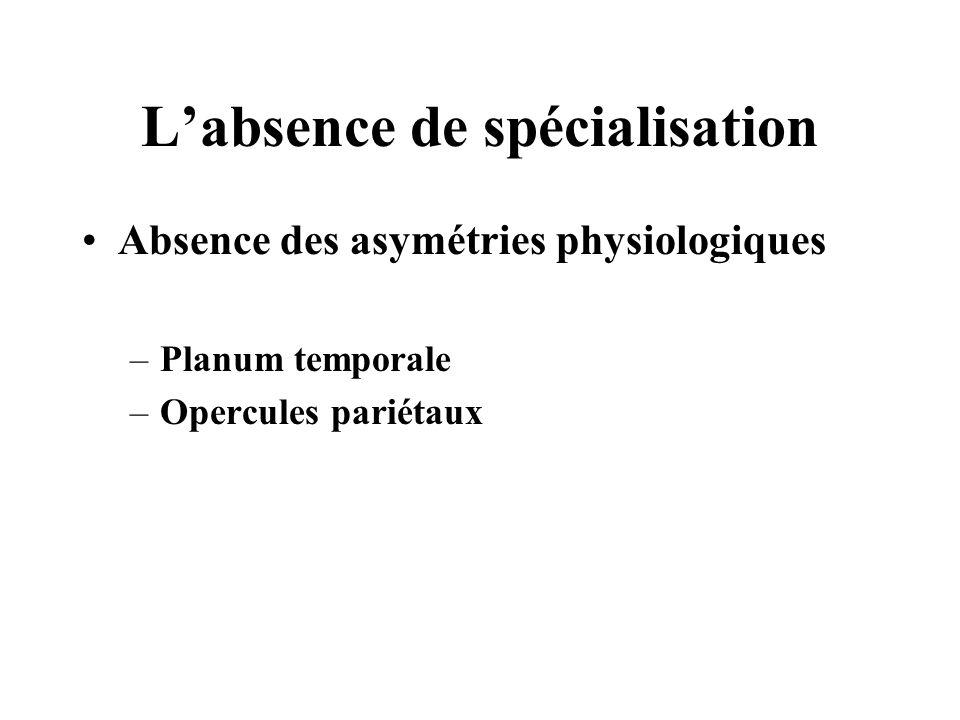 Labsence de spécialisation Absence des asymétries physiologiques –Planum temporale –Opercules pariétaux