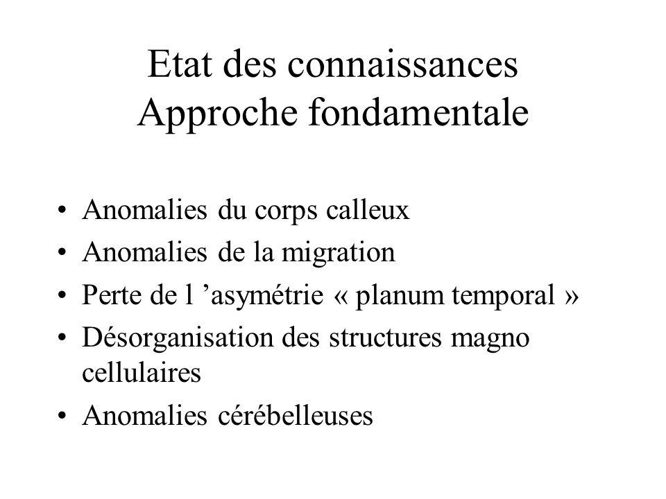 Etat des connaissances Approche fondamentale Anomalies du corps calleux Anomalies de la migration Perte de l asymétrie « planum temporal » Désorganisa