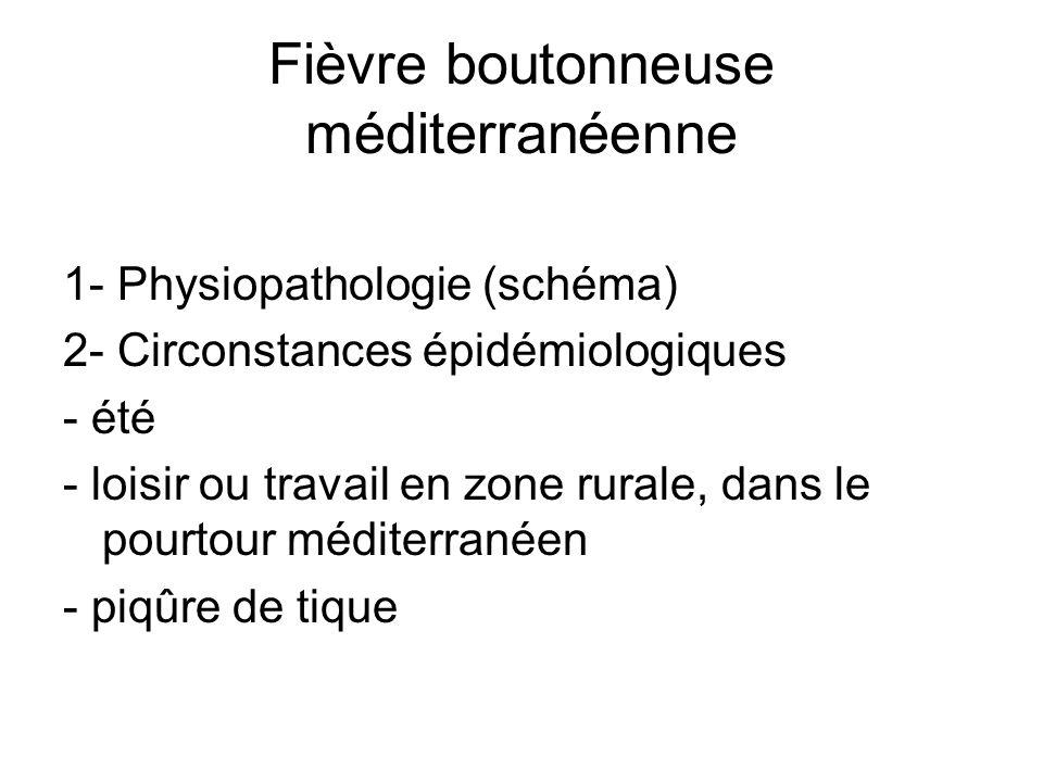 Fièvre boutonneuse méditerranéenne 1- Physiopathologie (schéma) 2- Circonstances épidémiologiques - été - loisir ou travail en zone rurale, dans le pourtour méditerranéen - piqûre de tique