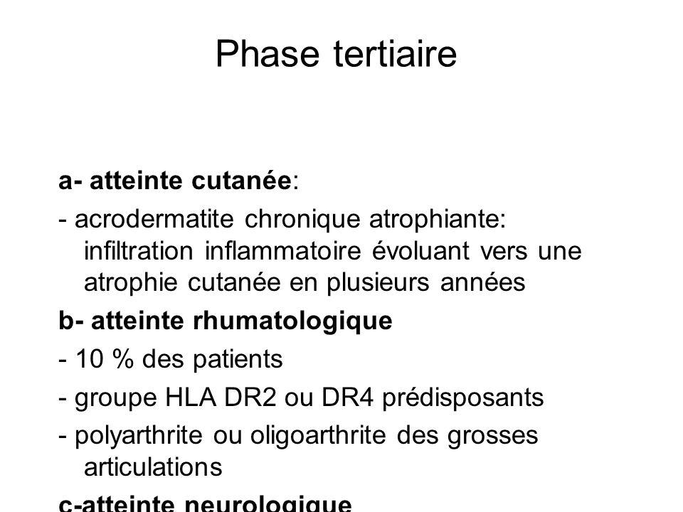 Phase tertiaire a- atteinte cutanée: - acrodermatite chronique atrophiante: infiltration inflammatoire évoluant vers une atrophie cutanée en plusieurs années b- atteinte rhumatologique - 10 % des patients - groupe HLA DR2 ou DR4 prédisposants - polyarthrite ou oligoarthrite des grosses articulations c-atteinte neurologique - encéphalopathie chronique - polyneuropathie périphérique - leuco-encéphalite