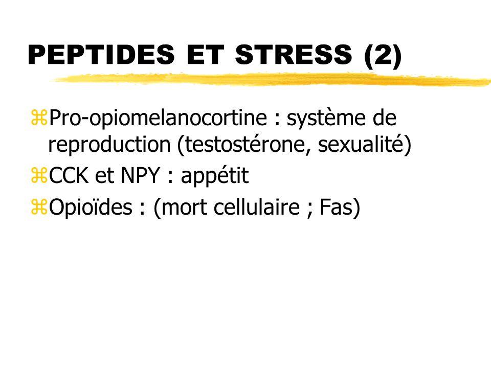 PEPTIDES ET STRESS (2) zPro-opiomelanocortine : système de reproduction (testostérone, sexualité) zCCK et NPY : appétit zOpioïdes : (mort cellulaire ;