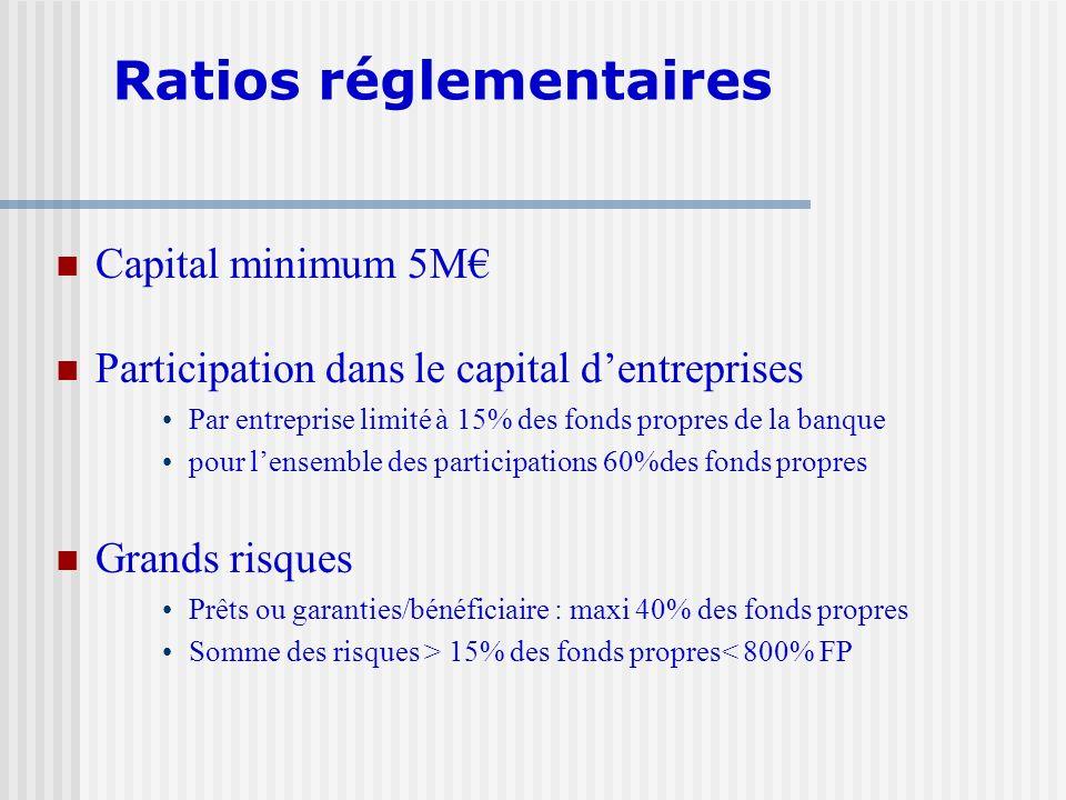Capital minimum 5M Participation dans le capital dentreprises Par entreprise limité à 15% des fonds propres de la banque pour lensemble des participat