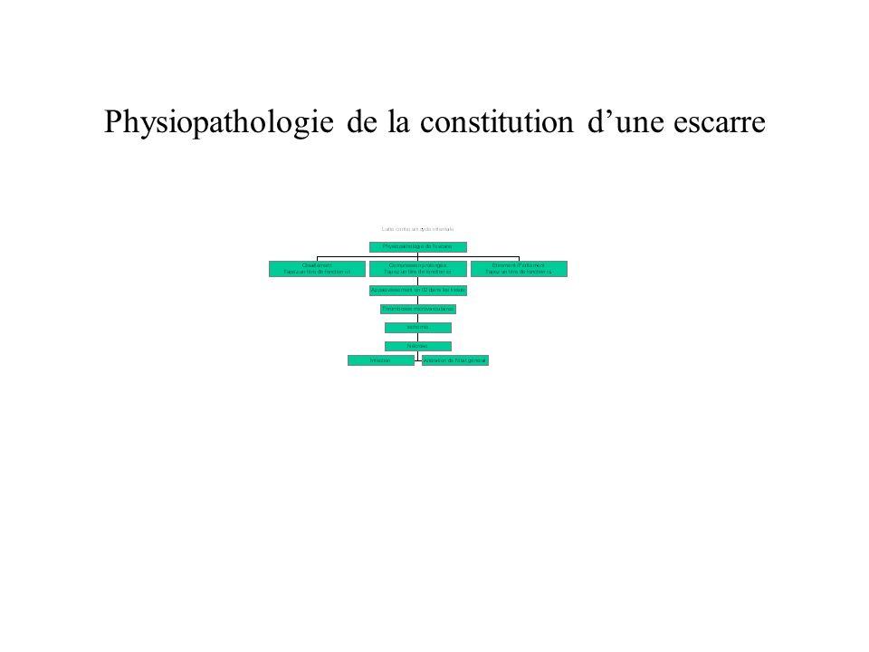 Physiopathologie de la constitution dune escarre