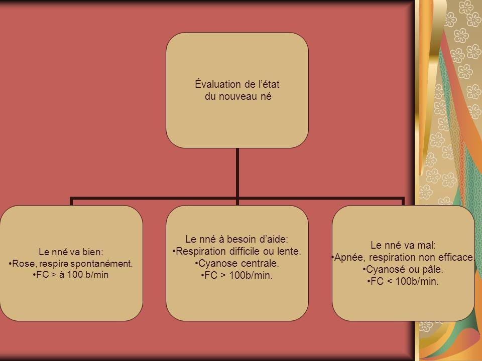 Évaluation de létat du nouveau né Le nné va bien: Rose, respire spontanément. FC > à 100 b/min Le nné à besoin daide: Respiration difficile ou lente.