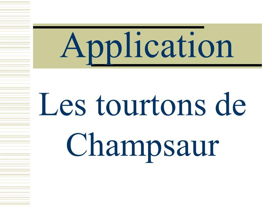 Application Les tourtons de Champsaur