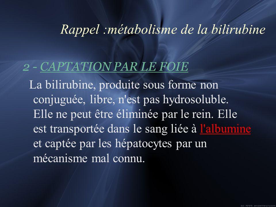 Rappel :métabolisme de la bilirubine 2 - CAPTATION PAR LE FOIE La bilirubine, produite sous forme non conjuguée, libre, n'est pas hydrosoluble. Elle n