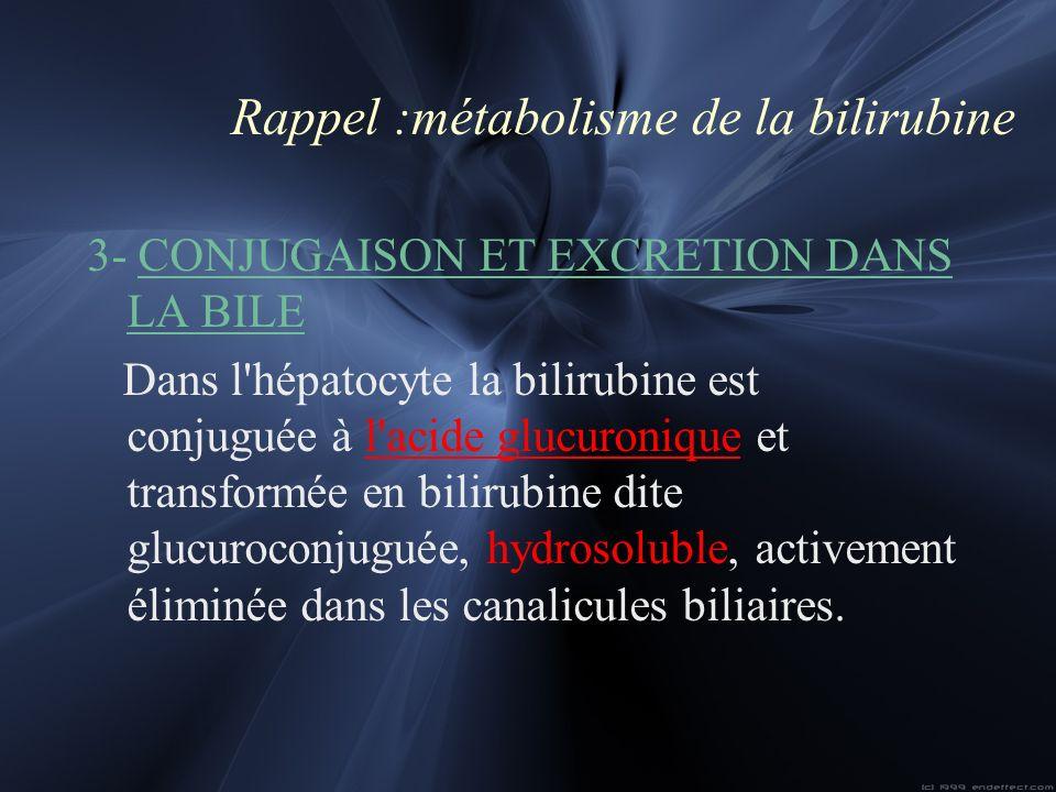 Rappel :métabolisme de la bilirubine 3- CONJUGAISON ET EXCRETION DANS LA BILE Dans l'hépatocyte la bilirubine est conjuguée à l'acide glucuronique et