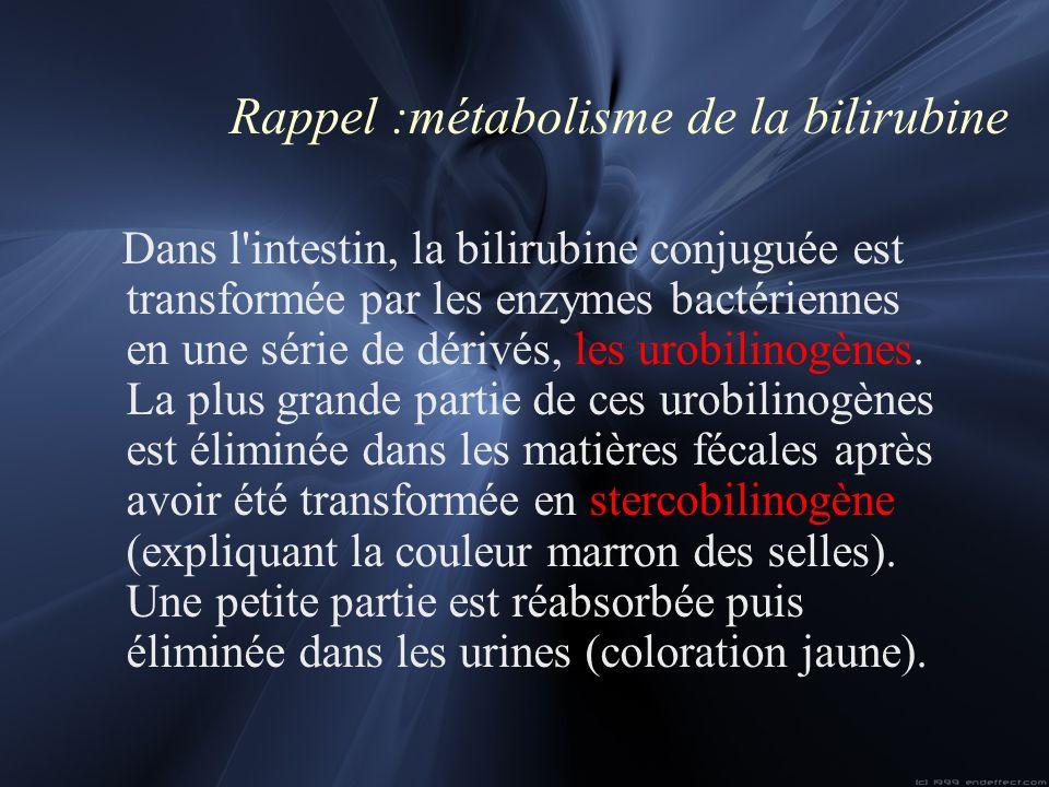 Rappel :métabolisme de la bilirubine Dans l'intestin, la bilirubine conjuguée est transformée par les enzymes bactériennes en une série de dérivés, le