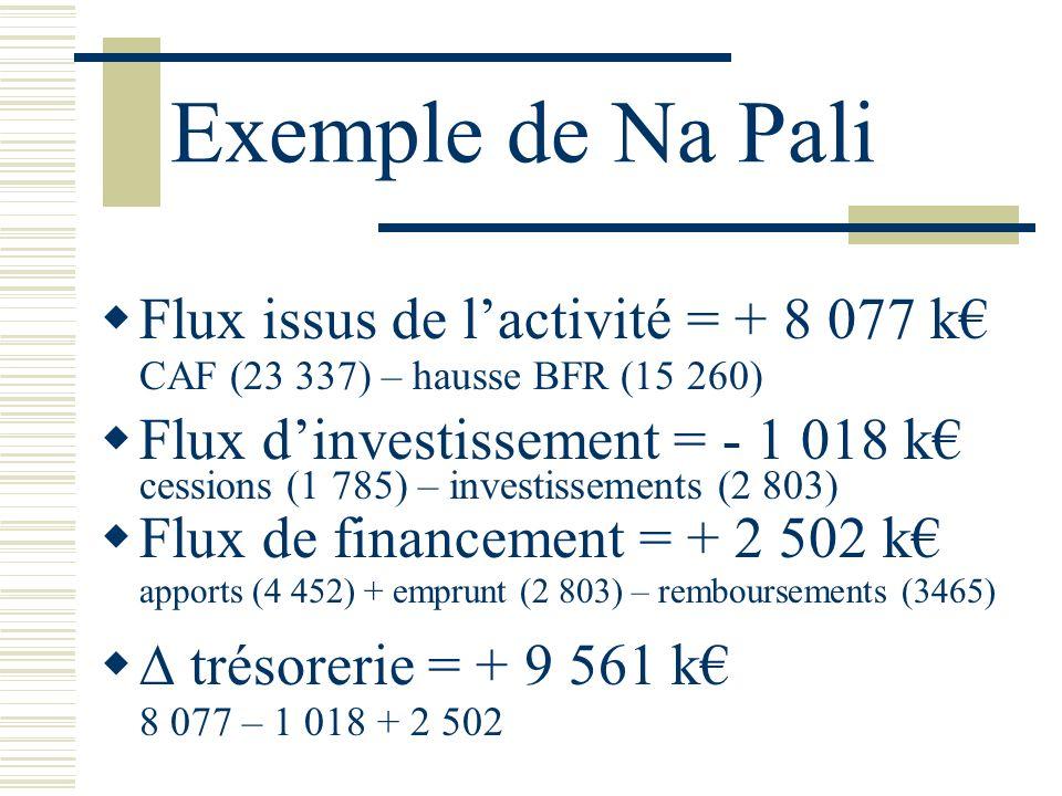 Exemple de Na Pali Flux issus de lactivité = + 8 077 k CAF (23 337) – hausse BFR (15 260) Flux dinvestissement = - 1 018 k cessions (1 785) – investis