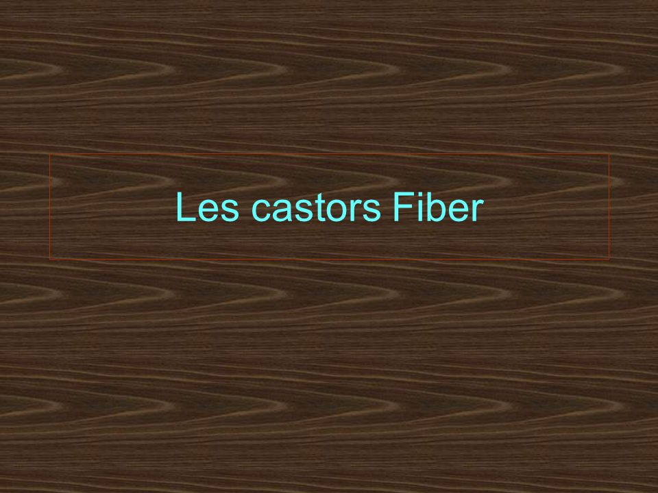 Sa description Le castor qui vit dans les eaux de la Cèze, le castor Fiber, se reconnais à sa taille qui, avec la queue, peut mesurer plus dun mètre.