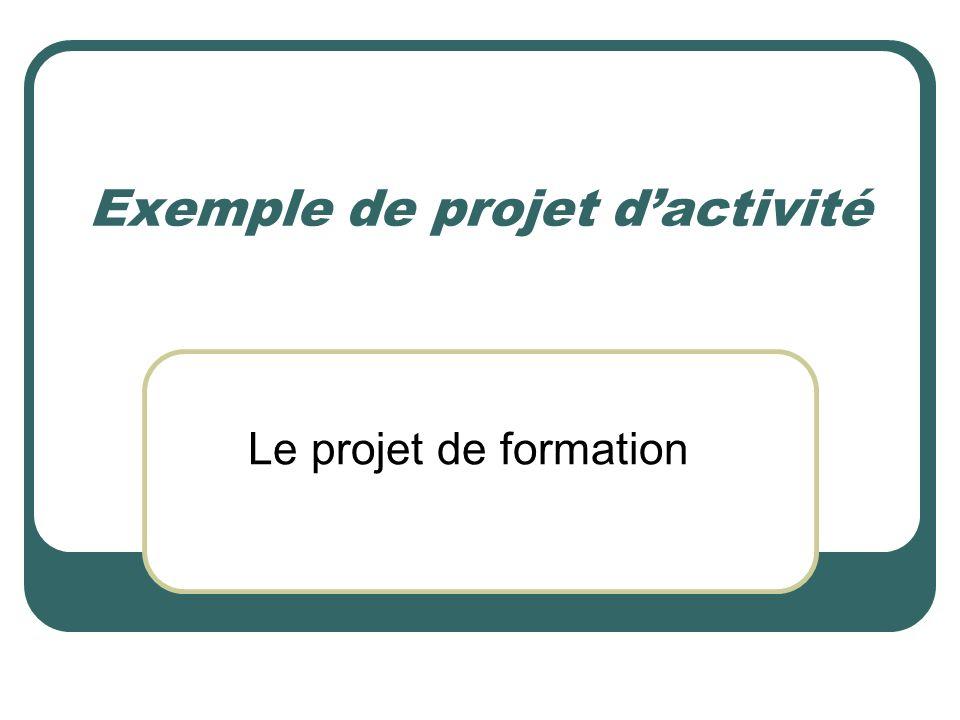 Exemple de projet dactivité Le projet de formation
