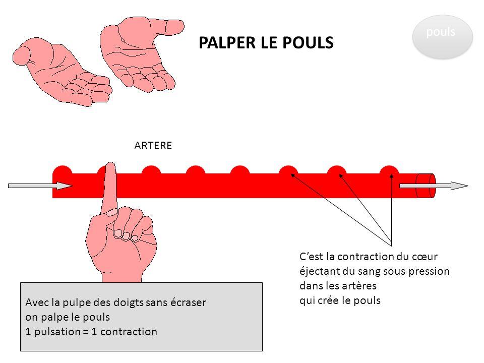 Les différentes mesures Le pouls La pression artérielle La saturation en oxygène La température corporelle La glycémie capillaire