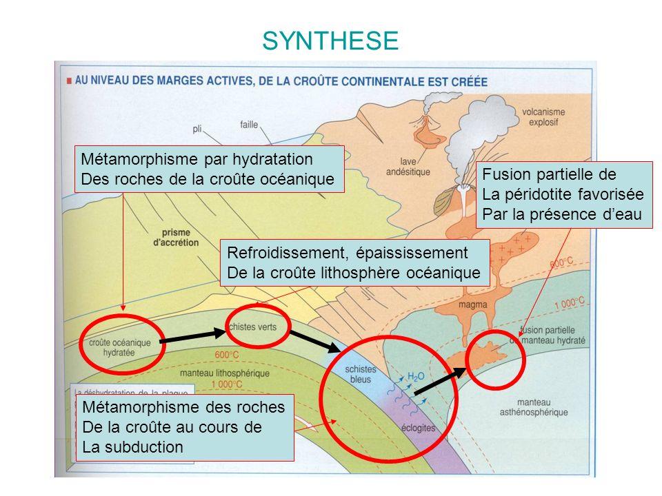 SYNTHESE Métamorphisme par hydratation Des roches de la croûte océanique Refroidissement, épaississement De la croûte lithosphère océanique Métamorphi