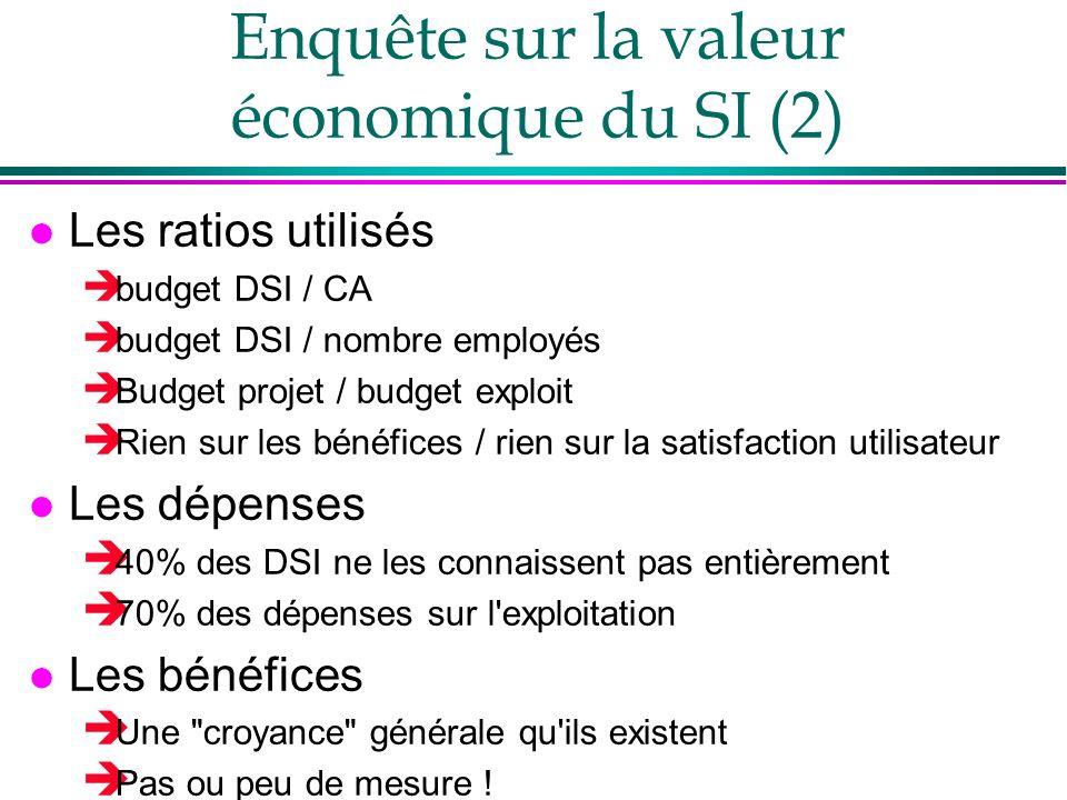 Enquête sur la valeur économique du SI (2) l Les ratios utilisés budget DSI / CA budget DSI / nombre employés Budget projet / budget exploit Rien sur