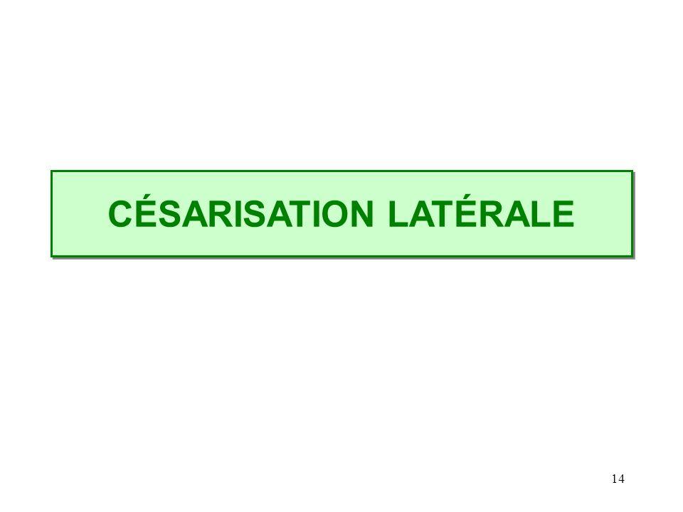 14 CÉSARISATION LATÉRALE