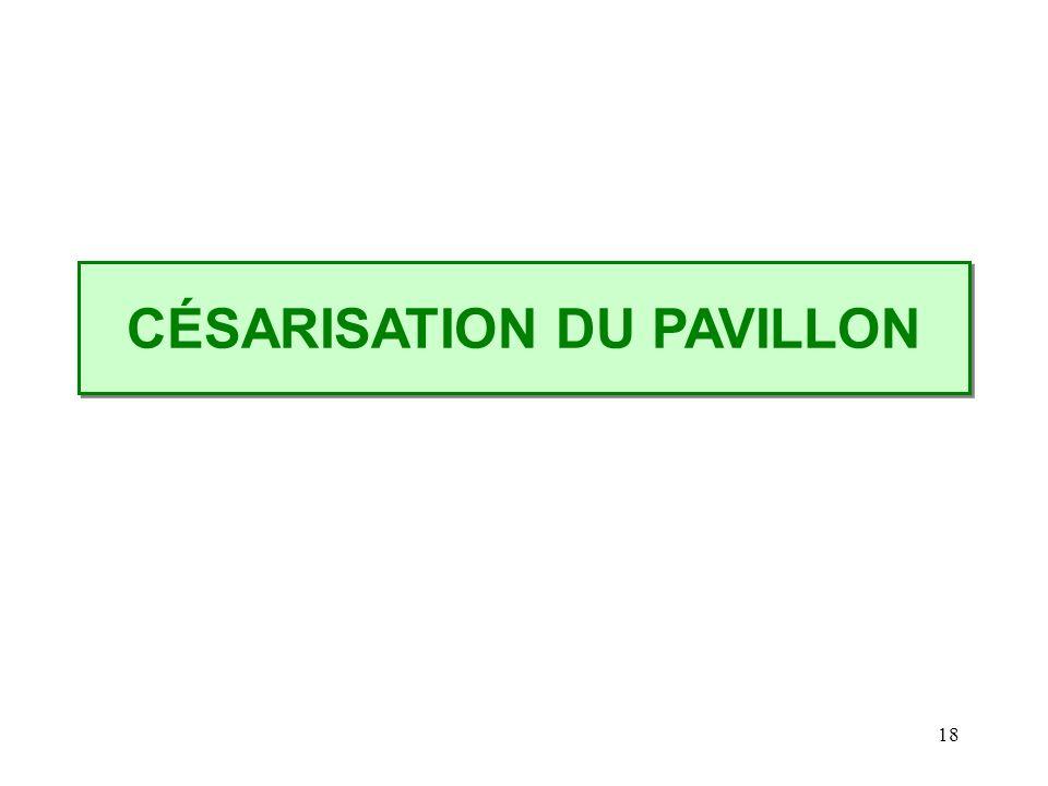18 CÉSARISATION DU PAVILLON