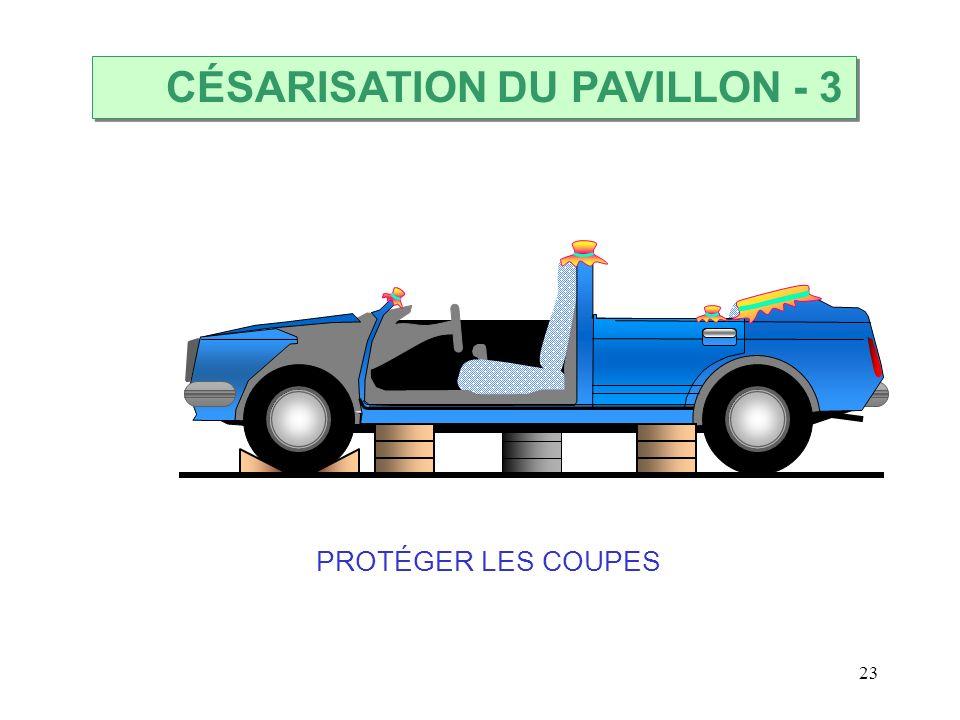 23 CÉSARISATION DU PAVILLON PROTÉGER LES COUPES - 3