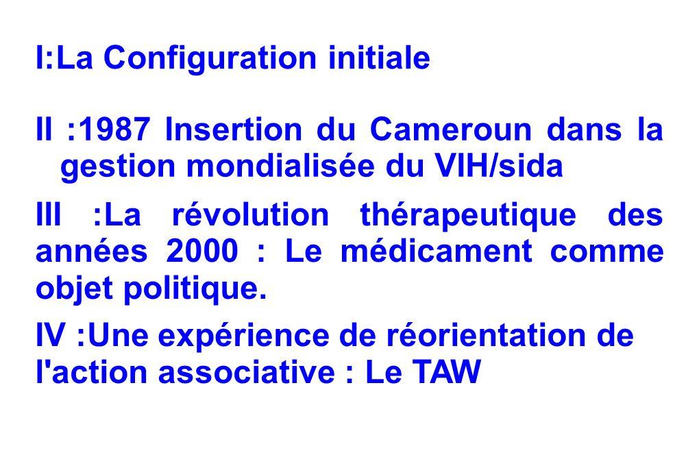 I:La Configuration initiale II :1987 Insertion du Cameroun dans la gestion mondialisée du VIH/sida III :La révolution thérapeutique des années 2000 : Le médicament comme objet politique.