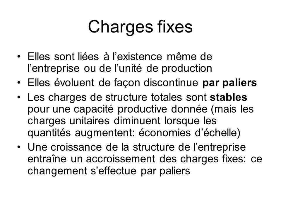 Charges fixes Elles sont liées à lexistence même de lentreprise ou de lunité de production Elles évoluent de façon discontinue par paliers Les charges