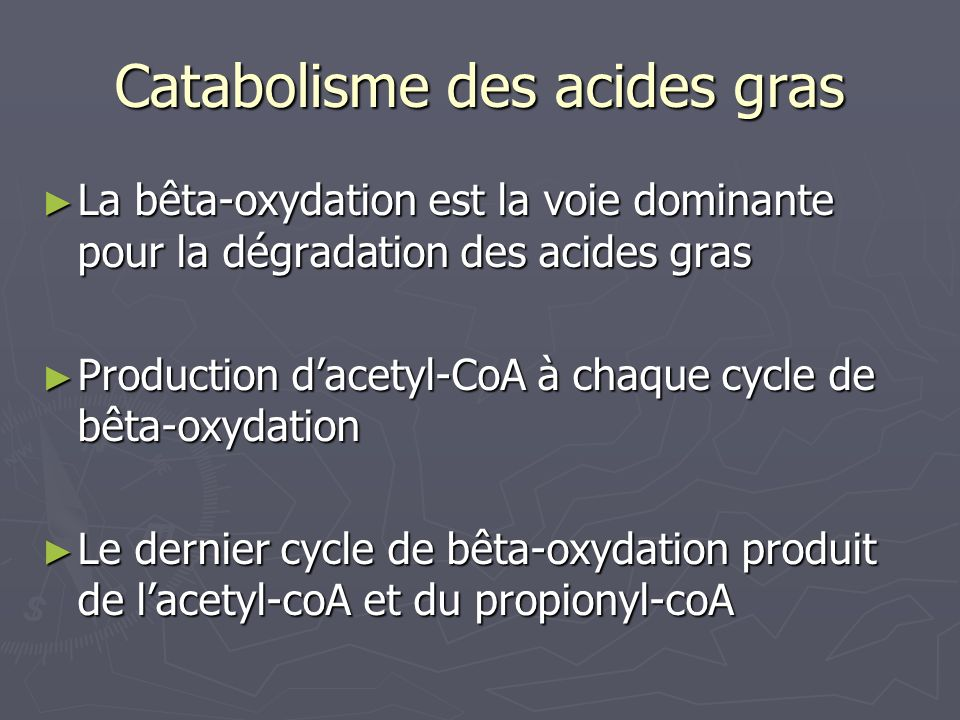 Symbiose Exemple de 3 bactéries symbiotiques chez des insectes : Exemple de 3 bactéries symbiotiques chez des insectes : - Buchnera - Wigglesworthia glossinidia - Candidatus Blochmania Réduction de la taille du génome Réduction du potentiel métabolique