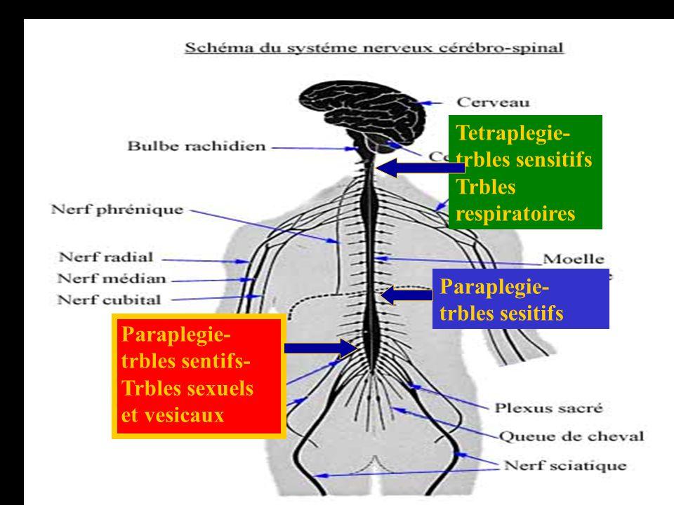 Tetraplegie- trbles sensitifs Trbles respiratoires Paraplegie- trbles sesitifs Paraplegie- trbles sentifs- Trbles sexuels et vesicaux