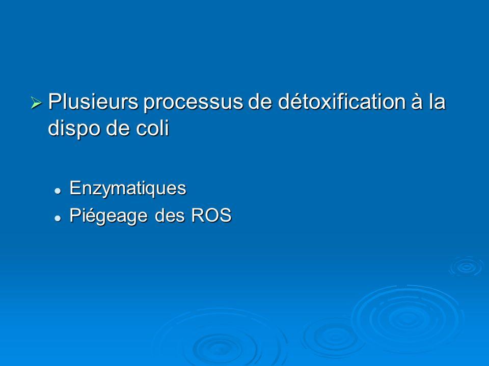 Plusieurs processus de détoxification à la dispo de coli Plusieurs processus de détoxification à la dispo de coli Enzymatiques Enzymatiques Piégeage des ROS Piégeage des ROS