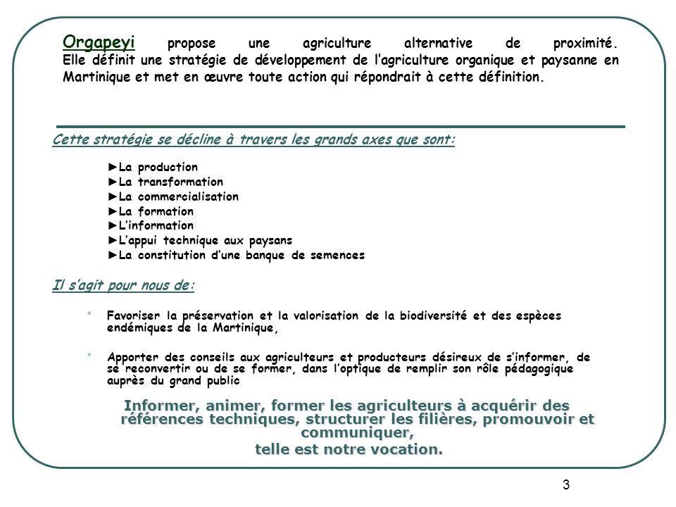 3 Orgapeyi propose une agriculture alternative de proximité. Elle définit une stratégie de développement de lagriculture organique et paysanne en Mart