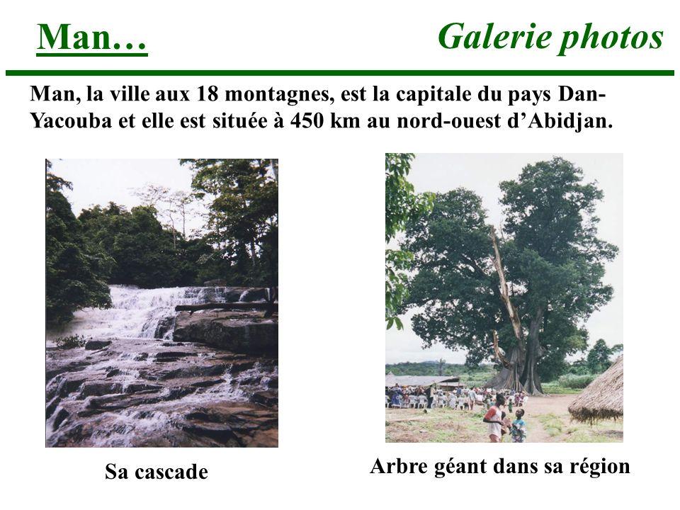 Galerie photos Man… Sa cascade Arbre géant dans sa région Man, la ville aux 18 montagnes, est la capitale du pays Dan- Yacouba et elle est située à 450 km au nord-ouest dAbidjan.