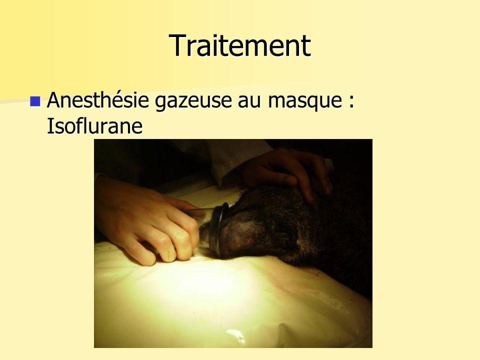 Traitement Anesthésie gazeuse au masque : Isoflurane Anesthésie gazeuse au masque : Isoflurane
