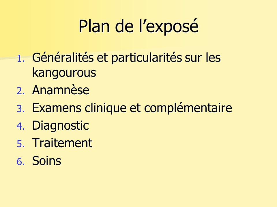 Plan de lexposé 1.Généralités et particularités sur les kangourous 2.