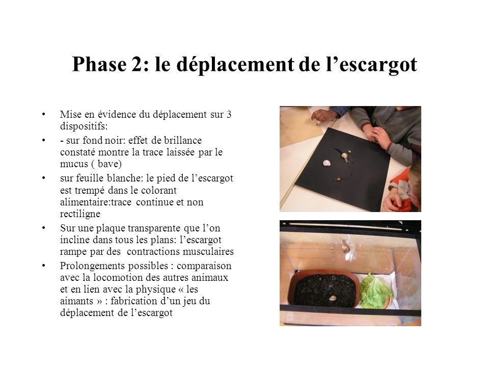 Phase 2: le déplacement de lescargot Mise en évidence du déplacement sur 3 dispositifs: - sur fond noir: effet de brillance constaté montre la trace l