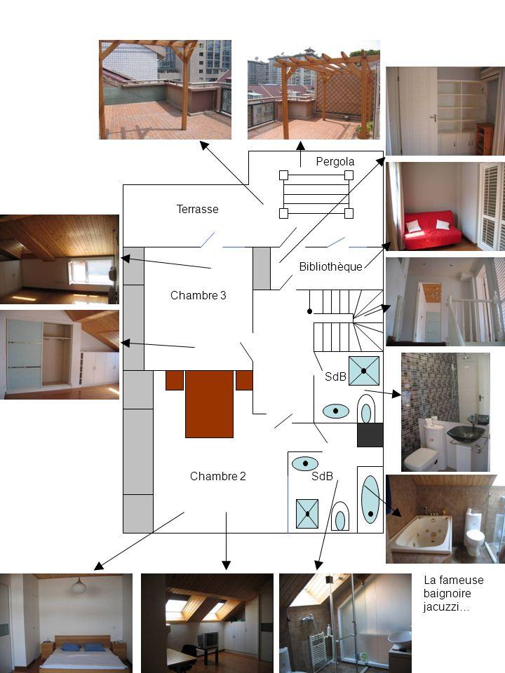 SdB Chambre 2 Chambre 3 Bibliothèque Terrasse Pergola La fameuse baignoire jacuzzi…