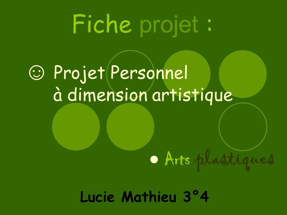 Projet Personnel à dimension artistique Lucie Mathieu 3°4 Fiche projet : Arts plastiques