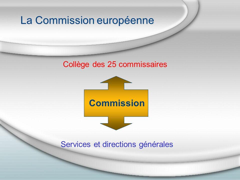 Sessions et commissions du Parlement européen Parlement 12 sessions plénières de 5 jours à Strasbourg Environ deux semaines par mois à Bruxelles Traité dAmsterdam